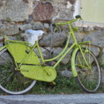 Plusy jazdy na rowerze